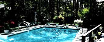 Pool maintanence